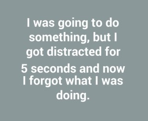 i-was-going-to-do-something-but-i-got-distracted-5637-640x640